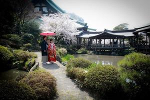 鎌倉光明寺フォトウェディング