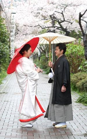 鎌倉桜ロケーションフォトウェディング