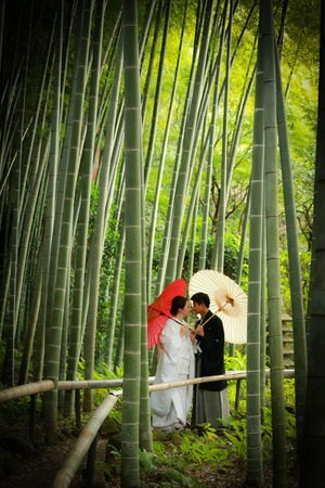 新緑フォトウェディング竹林