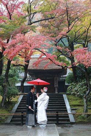 円覚寺紅葉婚礼写真1 (2)