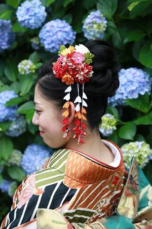鎌倉振袖髪飾りアジサイロケーション写真
