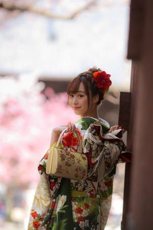 振袖 桜 撮影 鎌倉