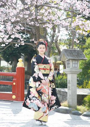 振袖屋外撮影 桜