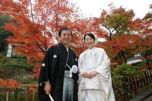 円覚寺紅葉婚礼写真1 (1)