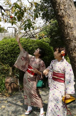 鎌倉着物散策写真3