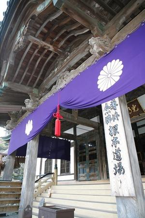 鎌倉光明寺正月 写真