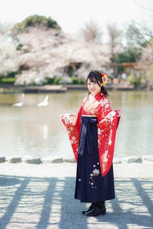 鎌倉卒業袴 桜 写真館