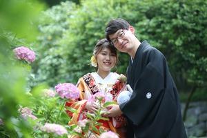 鎌倉紫陽花撮影 あじさいロケ 鎌倉アジサイ