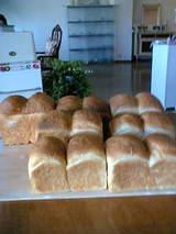 「食パン1」