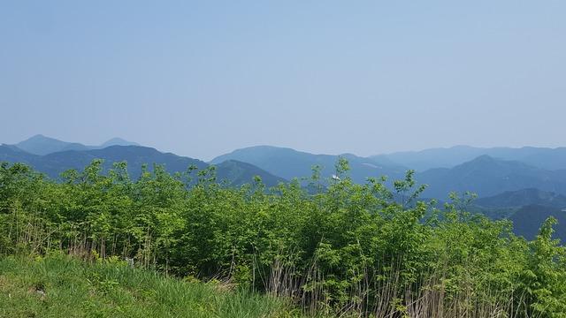 160521棒ノ折山03