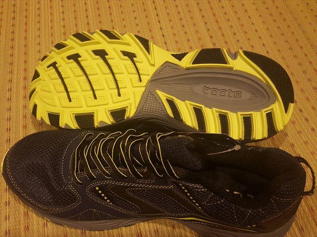 TESRA靴04