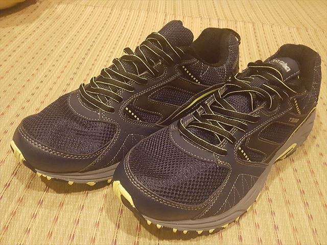 TESRA靴01