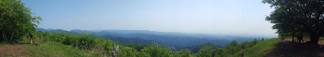 160521棒ノ折山04