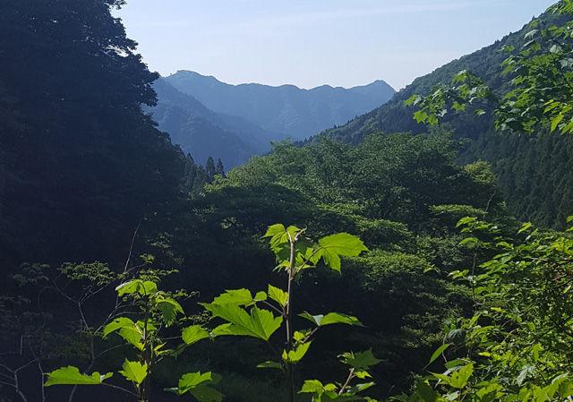 160206高水三山00