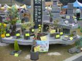 いばらきストーンフェスティバル4