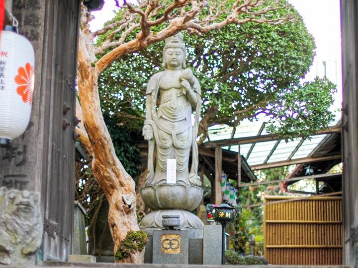奈良弘願寺2-2