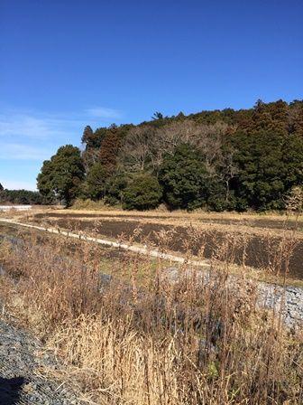 20160120 古新田川最上流 s