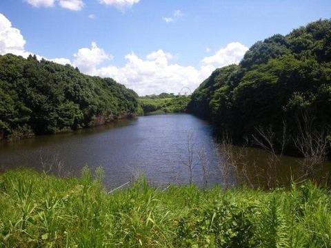 20100803上池