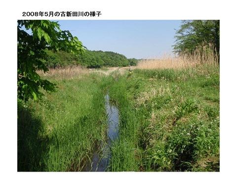 2008年5月古新田川