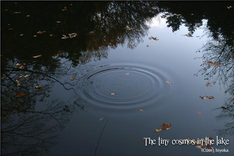 tinycosmos