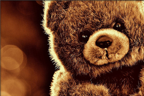 bear-1824882_1280
