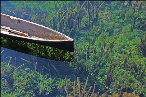 canoe-582659_1280
