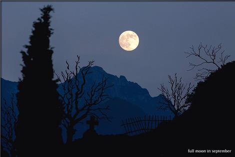 moon-744983