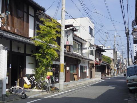 春の京都!:150317