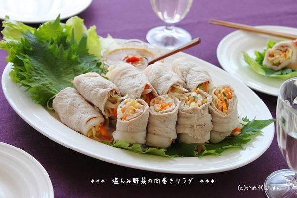 ブログ塩もみ野菜の肉巻サラダ(ヨリ)