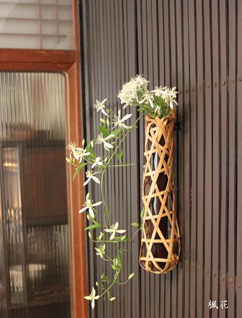 楓花の花6
