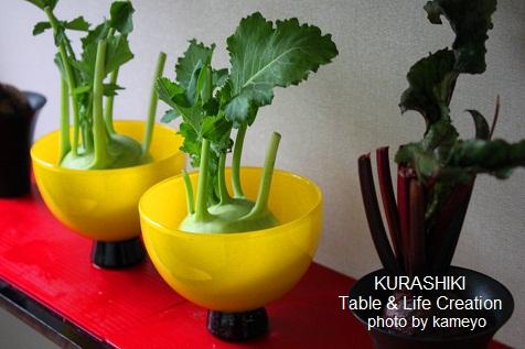 野菜のコーデ