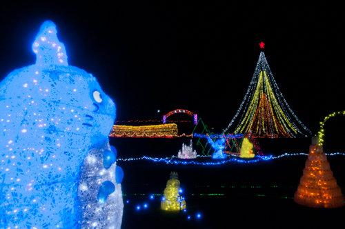 20121220田代公園イルミ2_500