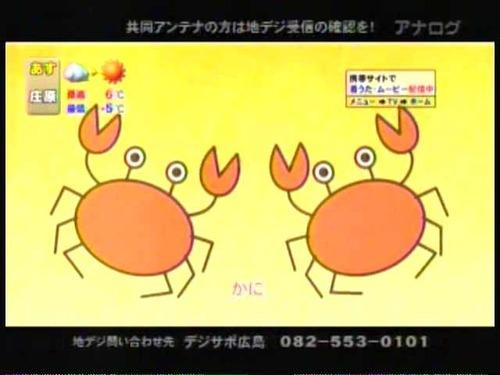 貝殻ブラッコ5
