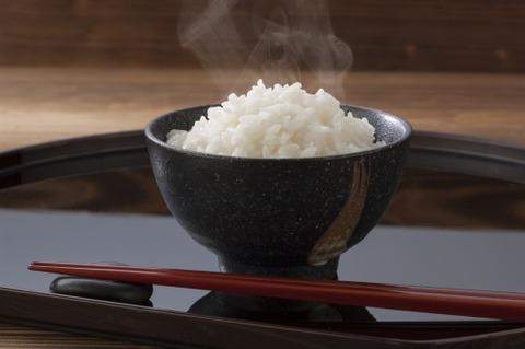おでんと白飯←うまい 餃子と白飯←うまい 焼肉と白飯←うまい シチューと白飯
