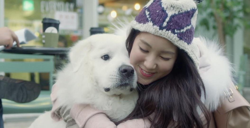 abl 犬とジエンちゃんかわいい♡(LABOUMはそるびん、ゆるひ、じえん推しで...  KAM