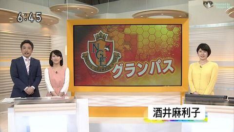 酒井麻利子 ほっとイブニング 17/04/03