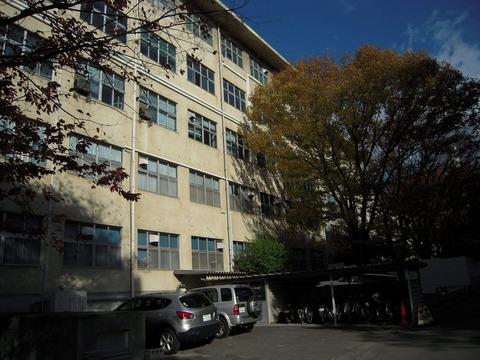 2010-11-09No(003)