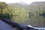 早朝の蔦沼