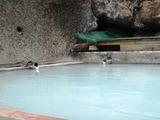 下段 浴槽湯口2