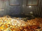 浴室 家族風呂3