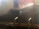2階 男性浴室湯口3