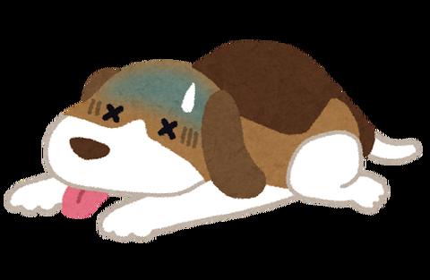 pet_byouki_dog