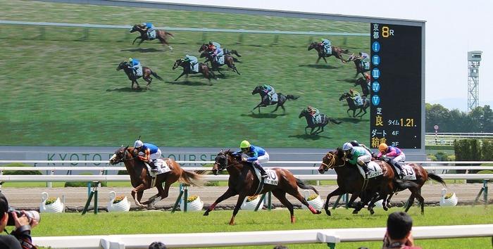 京都競馬場レース02