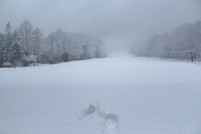 関東都心部で積雪15cmってどのくらいやばいん?