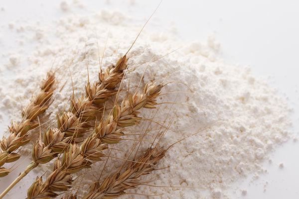 小麦粉とかいう有能な粉
