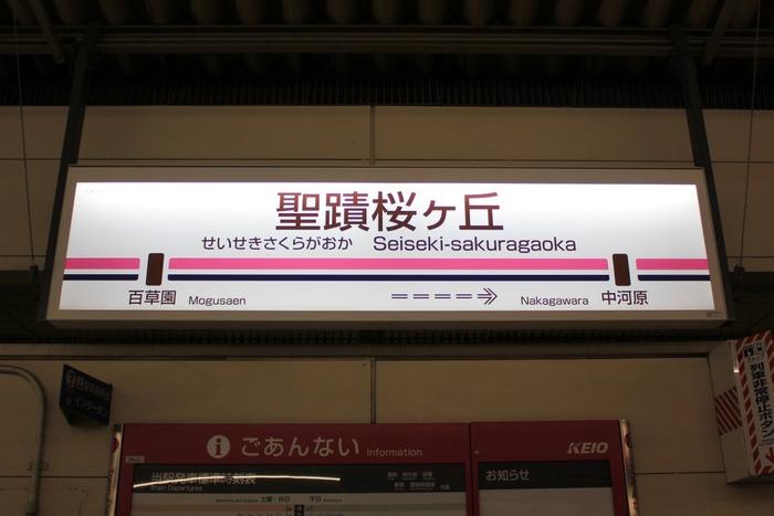 seiseki-sakuragaoka-2