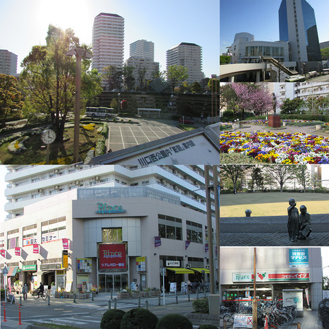kawaguchi_W_002
