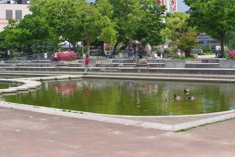 となりの池とは…
