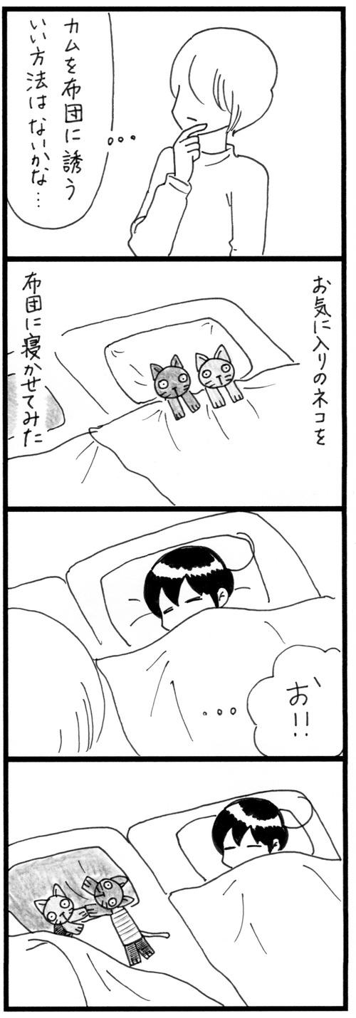 布団にネコ 2