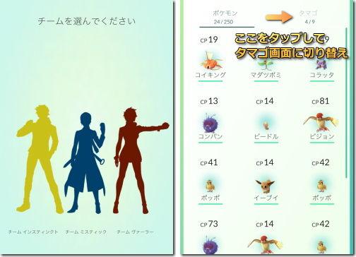 Pokemon GO ポケモンGO 陣営